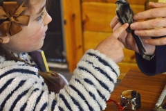 Completly engrossed youngster at a ringing event at Muirshiel