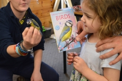 Learning about bird identification at a ringing event, Muirshiel